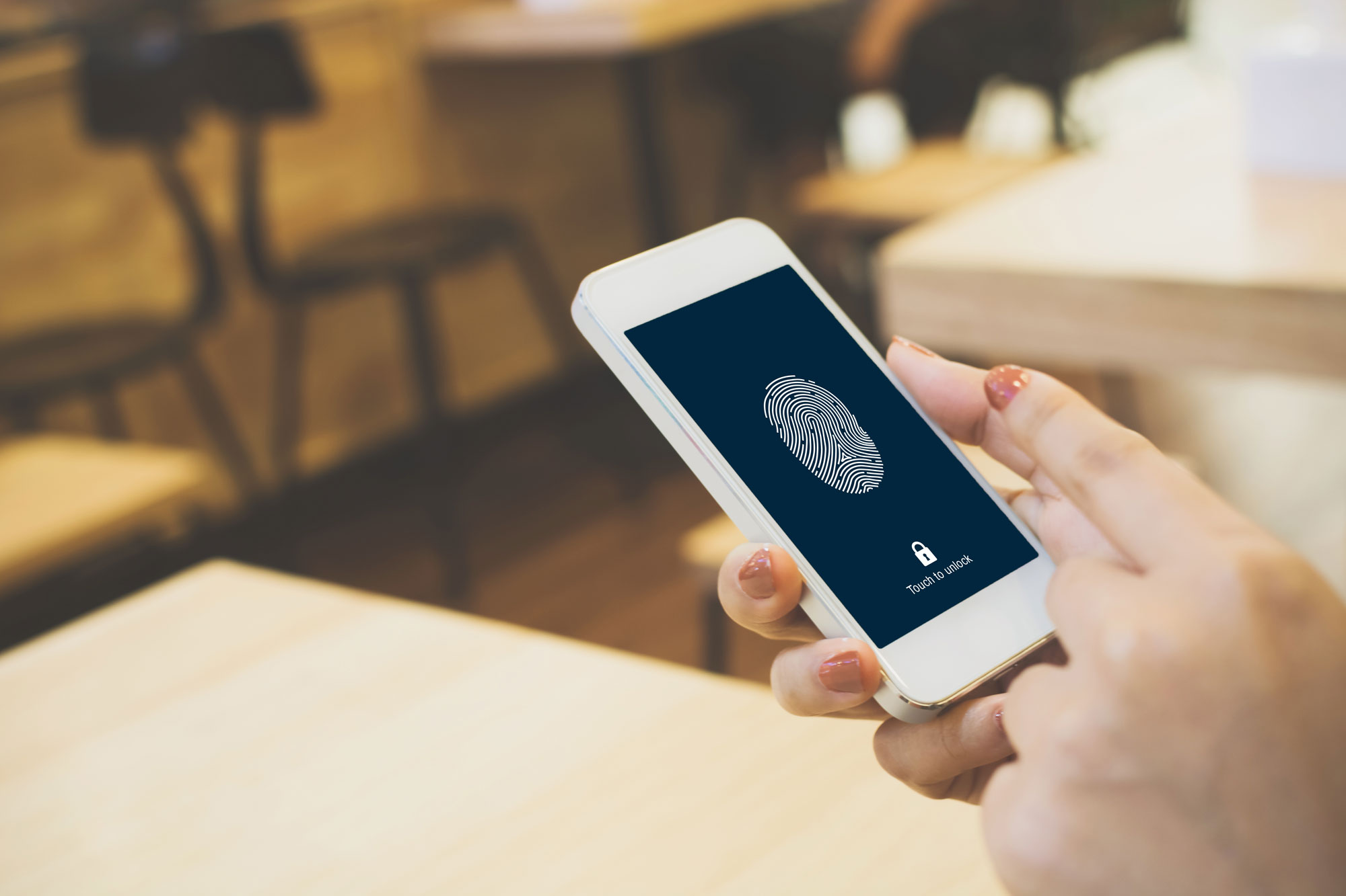 FICO Part II: Biometric Adoption— Evolution or Revolution