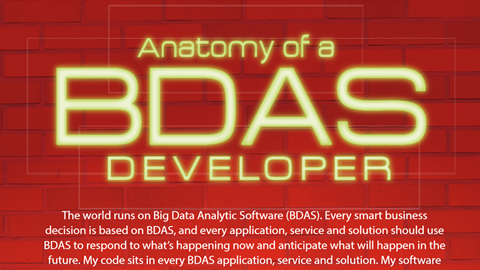 Anatomy of a BDAS Developer