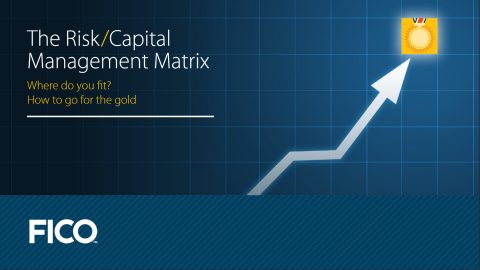 eBook: The Risk/Capital Management Matrix