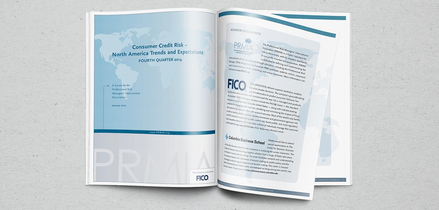 Risk Survey Report Cover