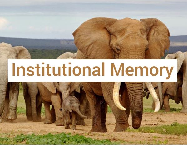 Institutional Memory Decision Fundamentals: Building Institutional Memory